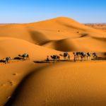 Uniikki Saharan vaellus