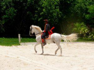 Todellinen mies vai prinssiä valkoisella ratsulla